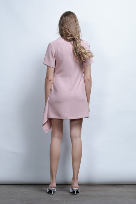 Anderson ruffle Dress 4